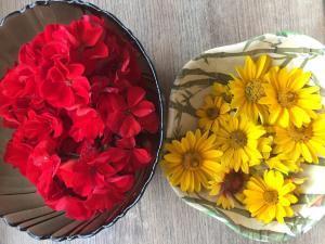Piros és sárga festésre alkalmas virágok