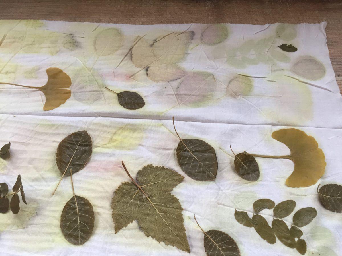 Ecoprint készítés